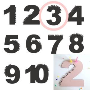 Rasmussons Geburtstagszahl 3 in rosa (Übersicht) - Holzspielzeug Profi