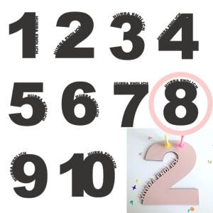 Rasmussons Geburtstagszahl 8 in rosa (Übersicht) - Holzspielzeug Profi
