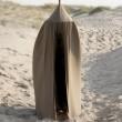 Baby Bello Baldachin Betthimmel Canopy Dusty Olive - Holzspielzeug Profi