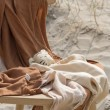Baby Bello Toby the Tiger: Safari - Holzspielzeug Profi