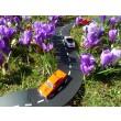 waytoplay im Frühling - Holzspielzeug Profi