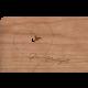 Holzpost® Grußkarte Hochzeit Vogel