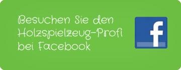 Holzspielzeug Profi bei Facebook